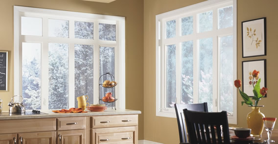 Vinyl Casement and Awning Windows