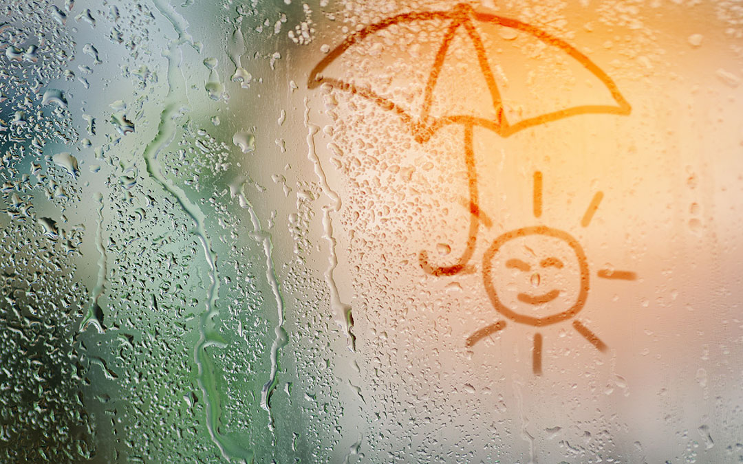 Window And Door Condensation Is It A Problem